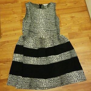 Bar III Fit & flair dress